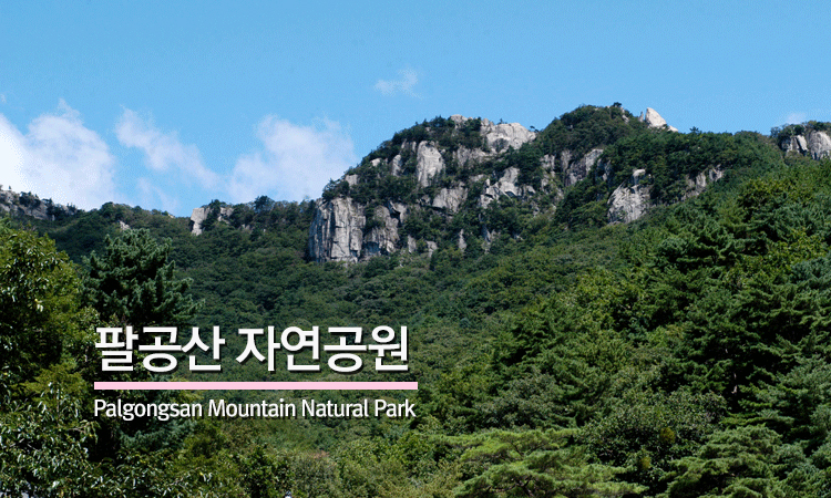 팔공산 자연공원 Palgongsan Mountain Natural Park